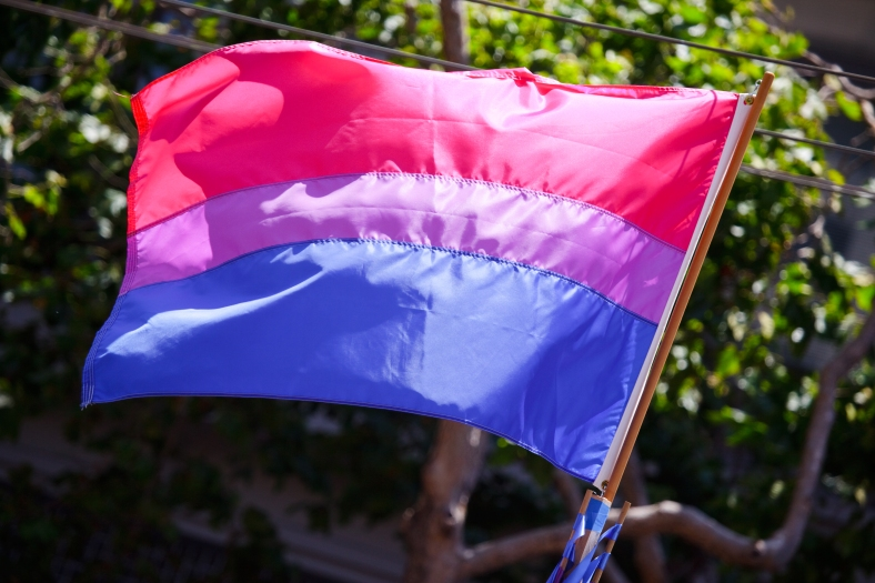 The_bisexual_pride_flag_(3673713584).jpg